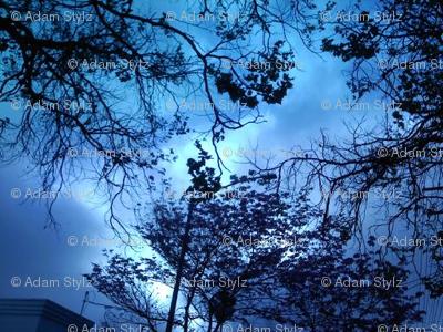 sky blu