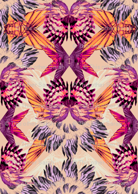 KALEIDOSCOPE_WINGS_CORAL