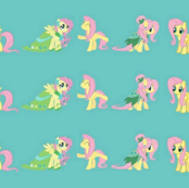 Fluttershy small