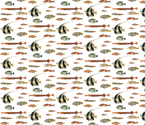 Tropical Fish fabric by flyingfish on Spoonflower - custom fabric