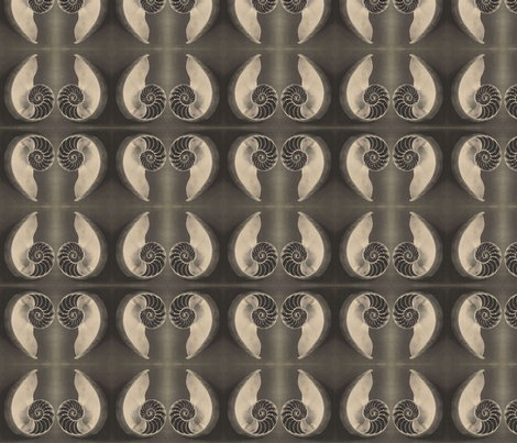 Nautilus fabric by flyingfish on Spoonflower - custom fabric