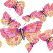 Rrrrfabric_pattern_just_butterflies_shop_thumb