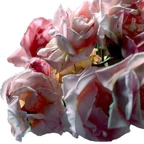 MORE_ROSES_OK