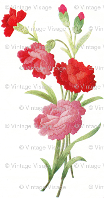 Vintage red carnations in thread