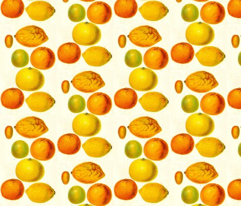 Rrbotanical-fruits-citrus-fruitsdetail_shop_preview