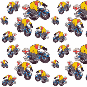 motorcycle riders 2