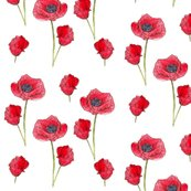 Rrr150_red_poppies_shop_thumb
