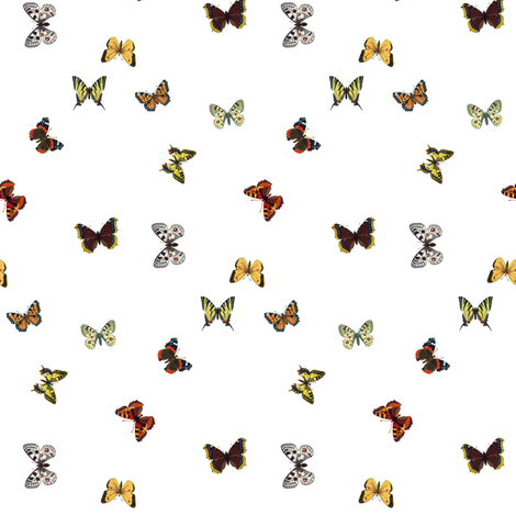 butterflys_fq fabric by mysticalarts on Spoonflower - custom fabric