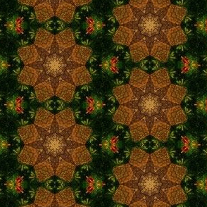 Bee Skep Kaleidoscope