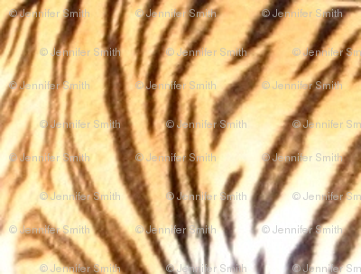 Tiger Stripes - small (mirror)