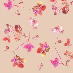 Blossom (rose)
