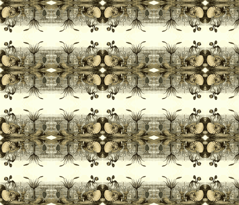Molluscus-ch fabric by flyingfish on Spoonflower - custom fabric