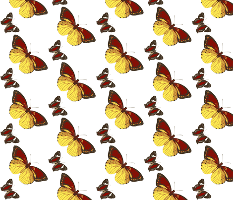 Butterflys' flight-ch fabric by flyingfish on Spoonflower - custom fabric
