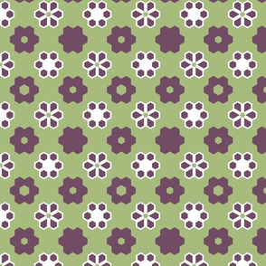 hex_contest_crop_2a