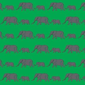 Elephants-ed-ch-ch-ch