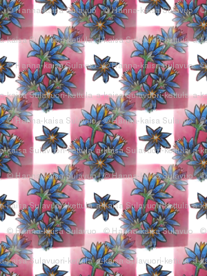 blue__red__white__flowers_and_squares