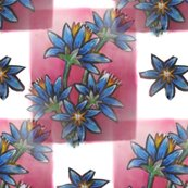 Rrblue__red__white__flowers_and_squares_shop_thumb