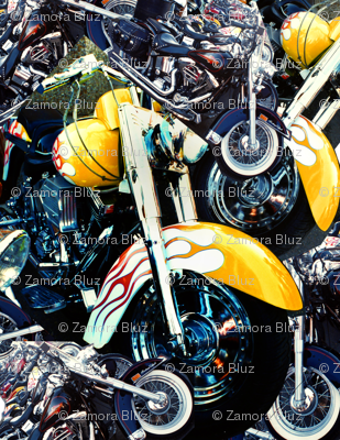 King Biscuit Bike Mandala