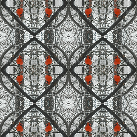 Diamond of Cardinals fabric by zsmama on Spoonflower - custom fabric