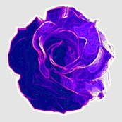 Rrrrrose_saturated_violet_shop_thumb