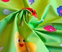 Rhap-pea_food_fruit_green_comment_186012_thumb
