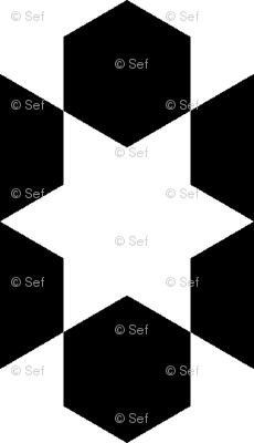 R6X E1