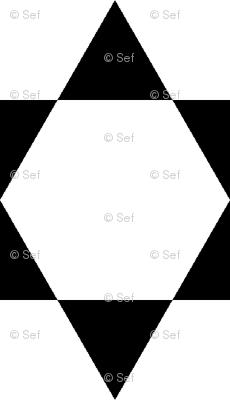 S63X V