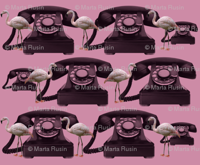 flamingos and phones