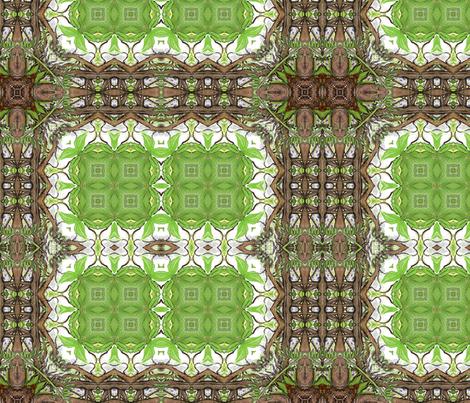 wisteria_fantasy-island