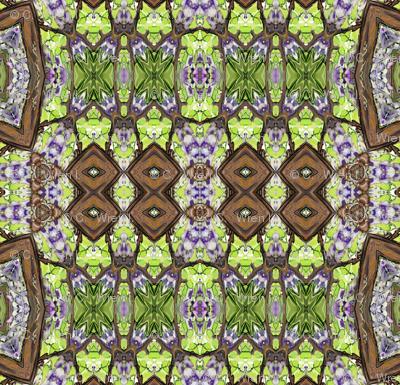 wisteria_tribe
