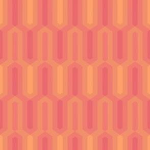 11_architect_salmon