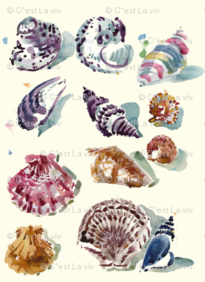 cestlaviv_shells day