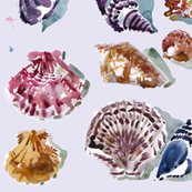 Rrcestlaviv_shells_shop_thumb