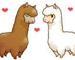 Rrrllama_love_thumb