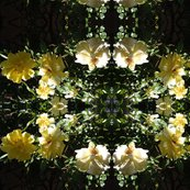 Rrmulti_yellow_roses_shop_thumb
