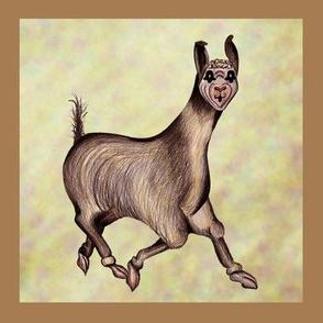 llama in frame