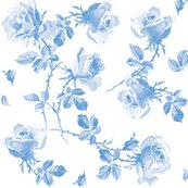 Rrblue_hampton_roses__shop_thumb