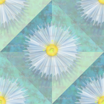 diagonal_diaphanous_daisies