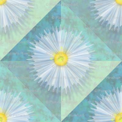 diagonal_diaphanous_daisies