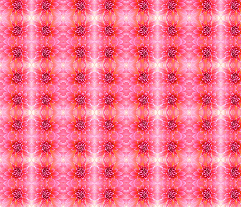 Hello_Dahlia! fabric by tequila_diamonds on Spoonflower - custom fabric