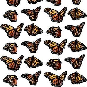 Monarchs_White