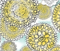 Rrrrdelightful_doilies_re-sized_flat_comment_173257_thumb
