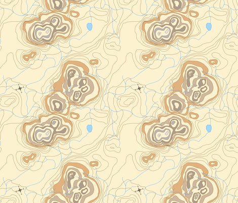 Rrbrown_contour_map_2_compass_rose_b_shop_preview