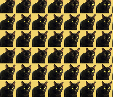 Velvet the Cat 3 Orange fabric by oceanpeg on Spoonflower - custom fabric