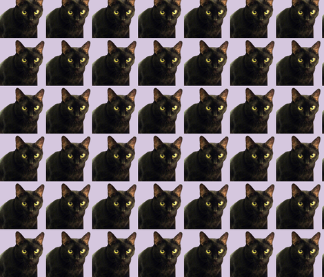 Velvet the Cat 7 Lavendar/Purple fabric by oceanpeg on Spoonflower - custom fabric
