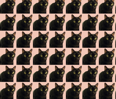 Velvet the Cat 11 Salmon fabric by oceanpeg on Spoonflower - custom fabric