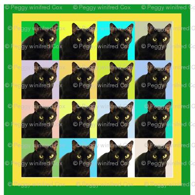 Velvet the Cat 162R Green and Yellow Frame