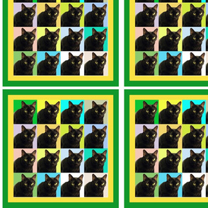 Velvet the Cat 162R Green and Yellow Frame