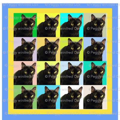 Velvet the Cat 163R Blue and Yellow frame