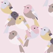 Little Birds 2